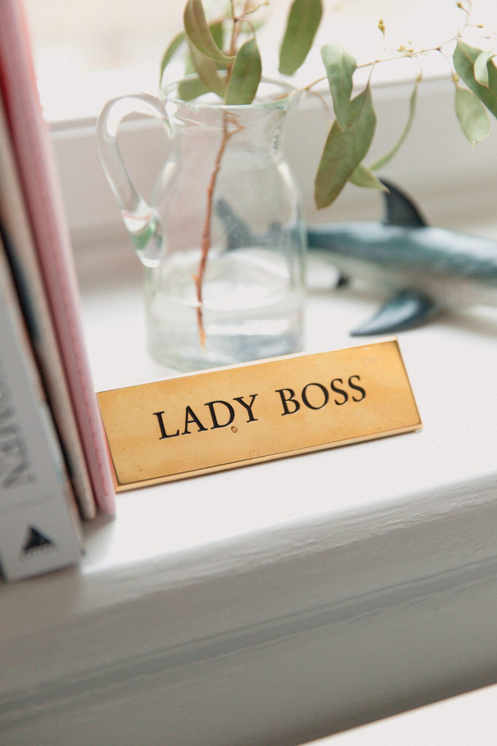 boss_v_leader
